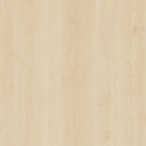 D440_SE_KLON_VANCOUVER jasny