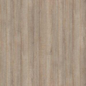 H1150 ST10 Dąb Arizona szary