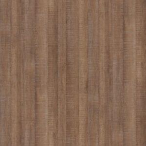 H1151 ST10 Dąb Arizona brązowy