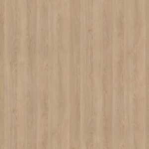 H3309 ST28 Dąb Gladstone piaskowy