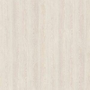 H3335 ST28 Dąb Gladstone biały
