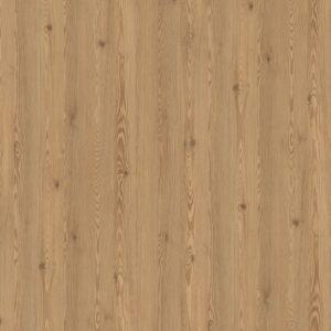 H3404 ST38 Modrzew górski brązowy